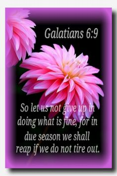 Galatians 6:9 NASB  Let us not lose heart in doing good, for in due time we will reap if we do not grow weary.