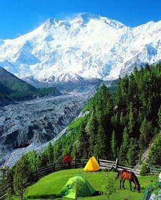 Fairy Meadows with Nanga Parbat in the background (Pakistan)