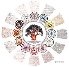 Indian Medicine Wheel - Pinned by The Mystic's Emporium on Etsy Native American Spirituality, Native American Wisdom, Native American History, American Indians, Cherokee History, Native Indian, Native Art, Native American Medicine Wheel, Book Of Shadows