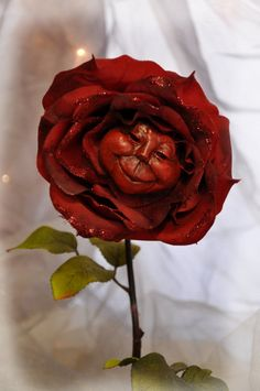 Alice in Wonderland Smiling red rose Flower by ShariDeppDesigns, $49.99