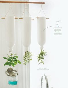 Hanging herbs in painted water bottles. Sweet Paul Magazine - Summer 2012 - Page 122-123