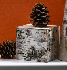 Birch Bark Cube - perfect for displaying natural crafts or candles ;)