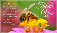 Free Thank You Bee eCard - eMail Free Personalized Thank You Cards Online