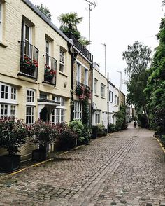 My mistake to wear wedges on this beautiful cobbled mews - I couldn't catch up to the silhouette ahead and her dog ☺️have a lovely day folks I'm hoping for the luck of the Irish to shine through for the match later #coybig ☘🌿