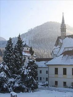 Gaming, Austria...  in the foot hills of the alps. Yes, that building is the Kartausa that we called home all semester!