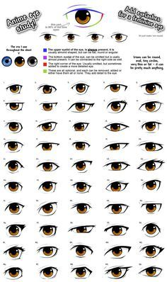 anime eye drawing reference, male/femaleYou can find Anime eyes and more on our website. Realistic Eye Drawing, Drawing Eyes, Drawing Sketches, Anatomy Drawing, Drawing Art, Drawing Lessons, Eye Sketch, Eye Drawings, Anime Sketch