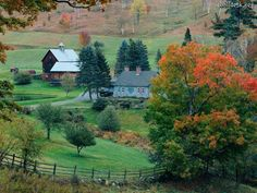 Image detail for -Wallpapers Woodstock, Vermont, papeis desktop image Colorful Forests ...