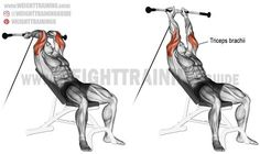 Incline cable triceps extension. An isolation exercise. Target muscle: Triceps Brachii. Synergists: None.