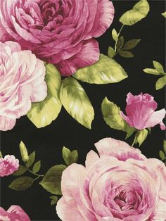 GN80000 / Spring Garden, Page 1 / Grandiflora Sidewall -- White, Pink, Green on Black