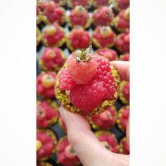 Focus Mignardises pour ma top chef Alexia @_m_i_a_m_ Merci de ta confiance renouvelée presta après presta    #food #pastry #patisserie #cooking #baking #frenchpastry #delicatessenbakery #artisanpatissier #traiteursurmesure #catering #fingerfood #buffet #cocktails #tartelette #cake #mignardises #homemade #faitmaison #naturel #foodstyling #foodporn #foodphoto #instagood #instabake #vscocam #f52grams #raspberry
