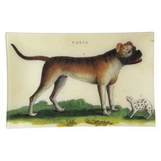 English Bulldog by John Derian (www.johnderian.com). To create these decorative platters, Derian and his small team of designers select historic illustrations that are reprinted, trimmed, and adhered to the back of crystal clear trays with lovely felt embellishments. The effect is decoupage art—a functional aesthetic object that can be hung like a fine painting. $165.00