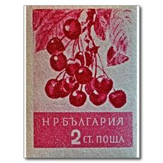 SOLD! 1956 Bulgarian Wild Cherry Stamp Postcard ~ #cherries @wfowen #photography #postcards #stamps :)