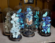 Excellent Skull and butterfly jars. Love this. I saw similar in a shop in Oslo. So wish I bought it now  The post  Skull and butterfly jars. Love this. I saw similar in a shop ..