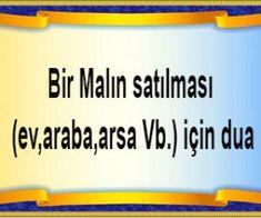 Allah Islam, Malta, Diy And Crafts, Good Things, Tulip, House, Pray, Health, Malt Beer