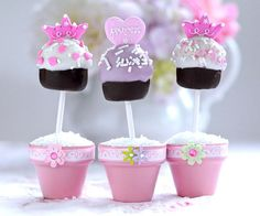 Love the idea of using mini decorated flower pots as cake pop holders.