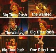 The Wanted, Big Time Rush, One Direction