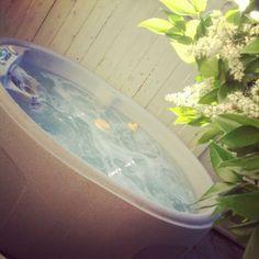 Hot tub at Meadowlark Inn Solvang