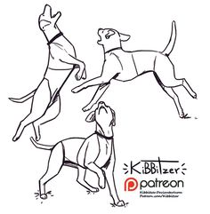 Become a patron of kibbitzer today: Read 595 posts by kibbitzer and get access to exclusive content and experiences on the world's largest membership platform for artists and creators. Animal Sketches, Animal Drawings, Art Sketches, Drawing Reference Poses, Anatomy Reference, Drawing Base, Figure Drawing, Drawing Techniques, Drawing Tips