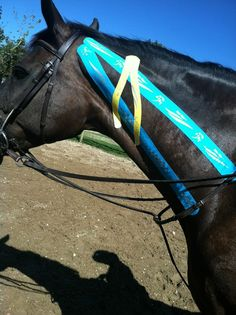 We all know how uncomfortable a sore neck can be. Equi-Tape Elastic Kinesiology Tape can be of great comfort to your horse's neck. Learn how to tape at www.equi-tape.com