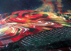Red Earth- Colorful fields of Dongchuan district in China