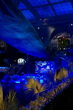 underwater theme.  This is another good theme for prom 2014.