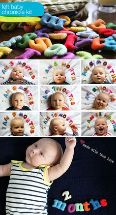 A cute way to chronical baby's first year... SO adorable.