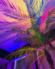 Sleazeburger in Paradise Purple Aesthetic, Aesthetic Photo, Aesthetic Backgrounds, Aesthetic Wallpapers, Types Of Aesthetics, Neon Room, Neon Wallpaper, Of Montreal, Retro Futurism