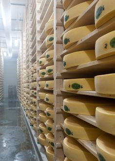 You Have to Get Up Early to Make Comté Cheese in France