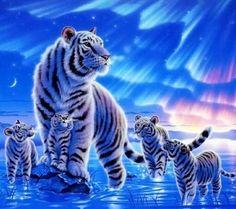 Kentaro Nishino art  http://www.kentaronishino.com/