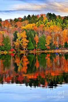 Reflections of a Canadian Fall day in Algonquin Park