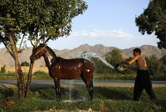 Afghanistan: September 2013