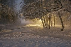 Winter stock at night by darkoantolkovic.deviantart.com on @DeviantArt