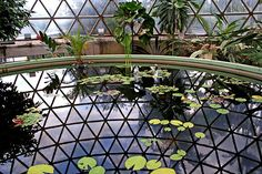 Geodesic Dome Greenhouse. Large.
