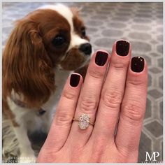 Life is always better with diamonds and puppies! Featuring our Carat Oval Cut DE Solitaire in yellow gold 💎 Traditional Engagement Rings, Unique Diamond Engagement Rings, Dream Engagement Rings, Wedding Things, Wedding Bands, Dream Wedding, 18k Rose Gold, Custom Jewelry, Rings For Men