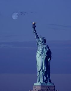 ✯ Liberty