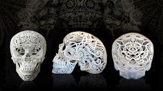 3D polymer printed skull