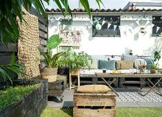 Deze 7 kamerplanten kunnen in de zomer ook buiten staan - Alles om van je huis je Thuis te maken | HomeDeco.nl Backyard, Patio, Outdoor Gardens, Outdoor Decor, Plants, Diy, Home Decor, Vacation, Terrace