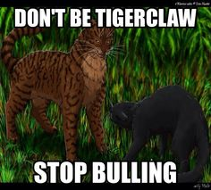 2: Tigerstar, reason: killed all those cats, plotted to kill Bluestar, united the dark forest to destroy the clans, And caused Cinderpelt to never become a warrior