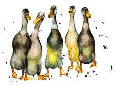 Indian Runner Ducks Art Giclee Print from an Original by Colourama