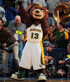 Baylor University Bears. Bruiser along with live American Black Bears, Joy and Lady cheer on the teams.