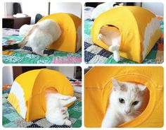 Show your cat a little extra love with this upcycled cat tent. All you need is a few minutes, 2 wire hangers, a piece of cardboard and an old t-shirt!