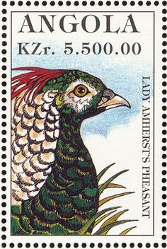 Lady Amherst's Pheasant stamps - mainly images - gallery format