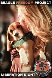 BEAGLE FREEDOM PROJECT.  If you are not famailar with BFP they are a wonderful organization devoted to rescuing  beagles used for animal experiments in laboratories. This organization is close to my heart. Check them out http://www.beaglefreedomproject.org/