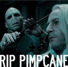 Poor Lucius.