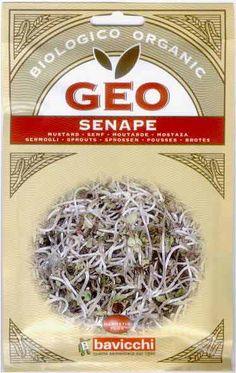Germogli di Senape Bio - Semi - Semilandia