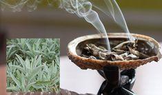 A nagymamától tanultam ezt a trükköt, azóta nem repedezik be a sarkam Feng Shui, Health, Plants, Finger, Decor, Decoration, Health Care, Fingers, Plant