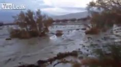 NEW Flash Flood, Alluvione in Genova, Italy 11 October, 2014 Incredible ...