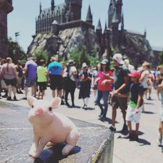 Feeling the magic at Harry Potter land in Universal.