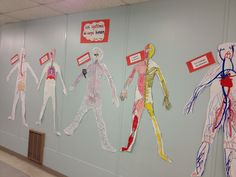 Human Body Systems project for Grade 5: Have students divided into groups, each group is responsible for making a model of one of the human body systems. Have the groups do research on the function of the system and then present their information to the class along with the model. My students LOVED this project!