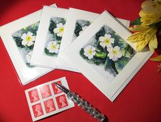 Handmade Primrose Watercolor Cards a perfect Mothers Day Gift